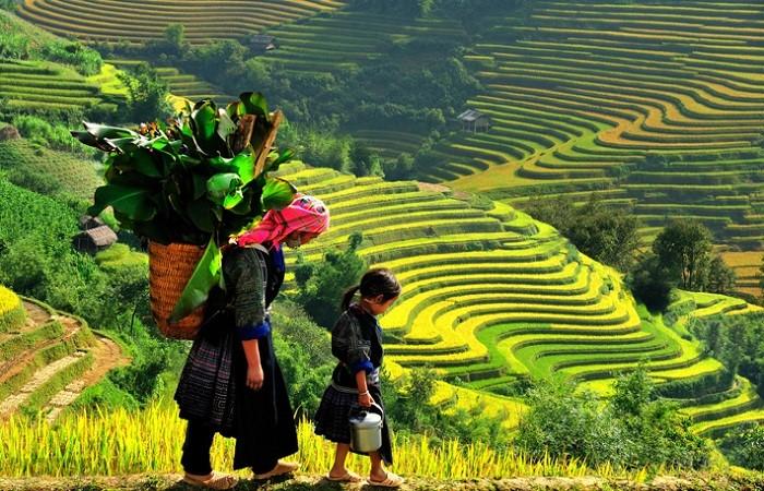 Ghé bản Tả Phìn mỗi khi có cơ hội du lịch Sapa - Vietskytourism